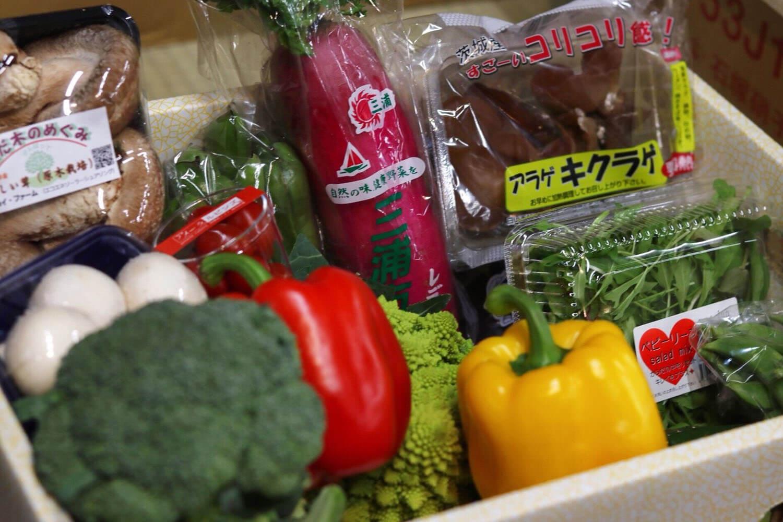 お野菜たくさん 岡井商店